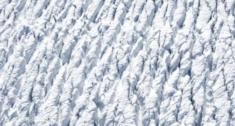 Arctic Flow