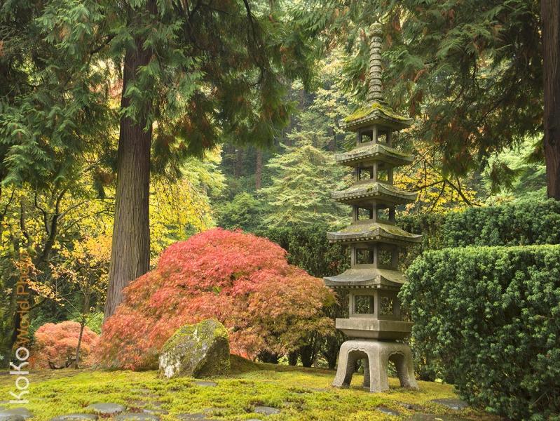 KoKo-World-Japanese-Garden-zen.jpg
