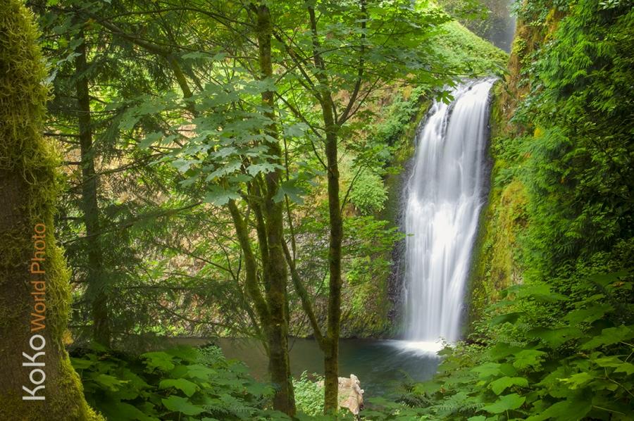 KoKo-World-wahkeena-falls.jpg