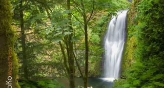 Wahkeena Falls Paradise